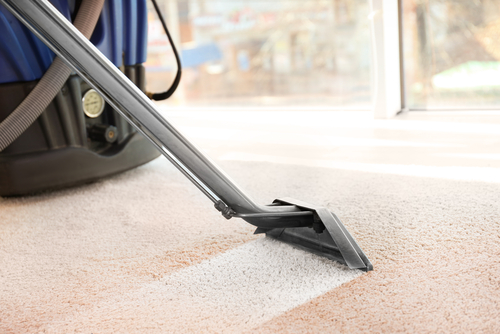 use-hot-water-in-a-steam-cleaner